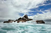 GalapagosSafari Ocean