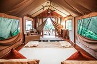 GalapagosSafari Tent