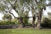 TourdelaRosa Garden
