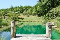LeCamp Pond2