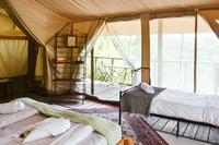 Tsavo Beds
