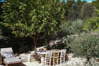 EviaFoxHouse Garden2