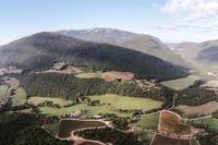 CarmineResidence Carmine estate and vineyards