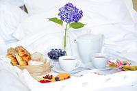 TheSolarEgasHotel BreakfastInBed