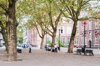 The Amsterdam Park Residence