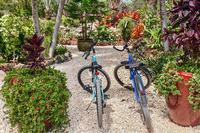 SandcastleVilla CAM bicycle26