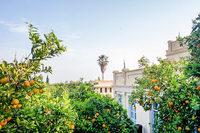 The Villa Luz Residence