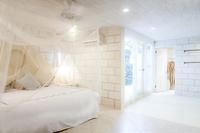 Family Vacation Rental The Bon Vivant Villa Barbados