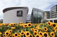 MuseumkwartierVanGoghMuseum